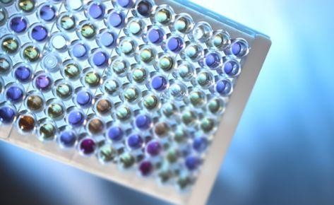 Тест-системы Erba SENSILATEST® для определения антибиотикочувствительности